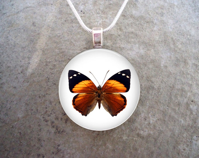 Butterfly Jewelry - Glass Pendant Necklace - Butterfly 6 - RETIRING 2017