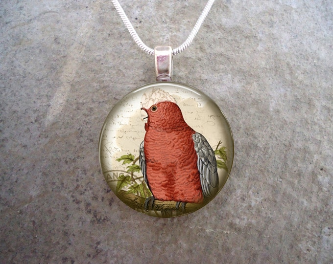 Cockatoo Jewelry - Glass Pendant Necklace - Victorian Bird 14 - RETIRING 2017
