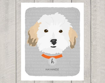 Havanese - Dog Nursery Art Print - Custom
