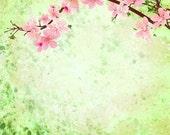 Green Grunge Cherry Blossom - Vinyl Photography Backdrop Floordrop Prop