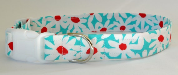"""Dog Collar Cute Turquoise Floral - """"Daisy Doolittle""""-NO EXTRA CHARGE for colored buckles"""