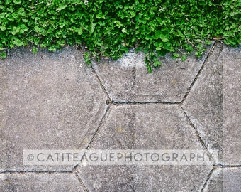 panoramic collage style photograph hexagon sidewalk and clover