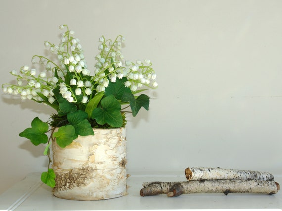 Birch bark vase wedding centerpieces party favors for a
