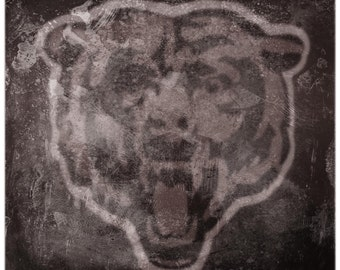 Chicago Bears Logo Print