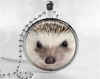 HEDGEHOG Necklace, Hedgehog Pendant, Hedgehog Jewelry, Hedgehog Charm, Glass Photo Art Necklace Pendant