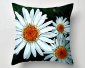 Flower Pillow Garden decor Daisy floral accent throw pillow cover  Fine Art Photography white yellow color nature botanical decor