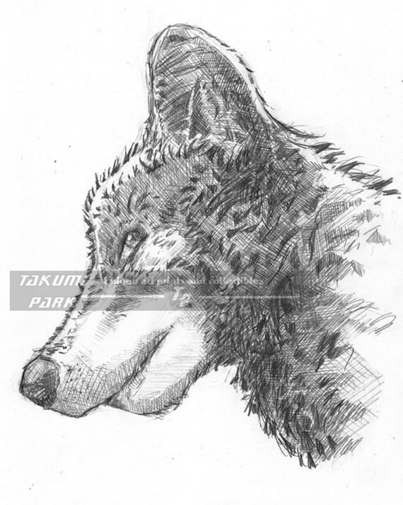 Arte del lupo lupo disegno disegno matita arte di takumipark for Lupo disegno a matita