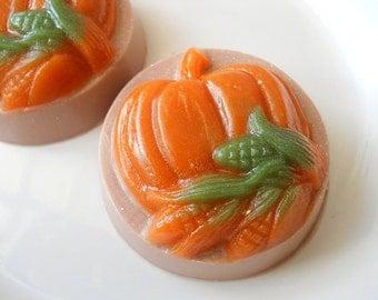 Decorative Pumpkin Soap, Autumn Soap, Fall Soap, Thanksgiving Soap, Glycerin Soap, Homemade Soap, Handmade soap,