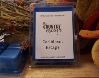 Caribbean Escape Scented 100% Soy Wax Melt - Tropical Coconut - Maximum Scented