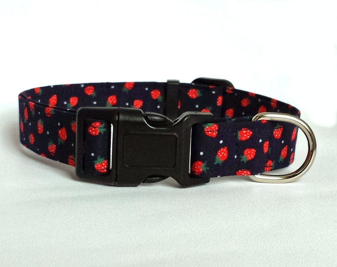 Strawberry with navy blue background