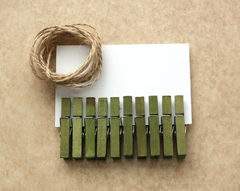 Small Clothespins Set of 10 Hand Dyed - Moss / Green
