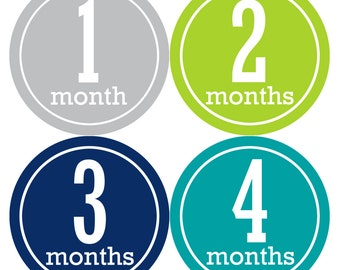 Monthly Baby Milestone Stickers Baby Boy Baby Shower Gift One-Piece Baby Stickers Monthly Baby Stickers Baby Month Sticker 162