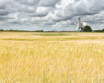 The dish at Chilbolton Observatory across a field of wheat - Landscape photography - mounted print photograph 12 x 9