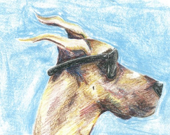 "Cruising Dog ""Jason"" wearing Sunglasses Print of Original Drawing, Oil Pastel Drawing, Quirky, Funny, Animal Art, Unusual Gift, Size11x15"