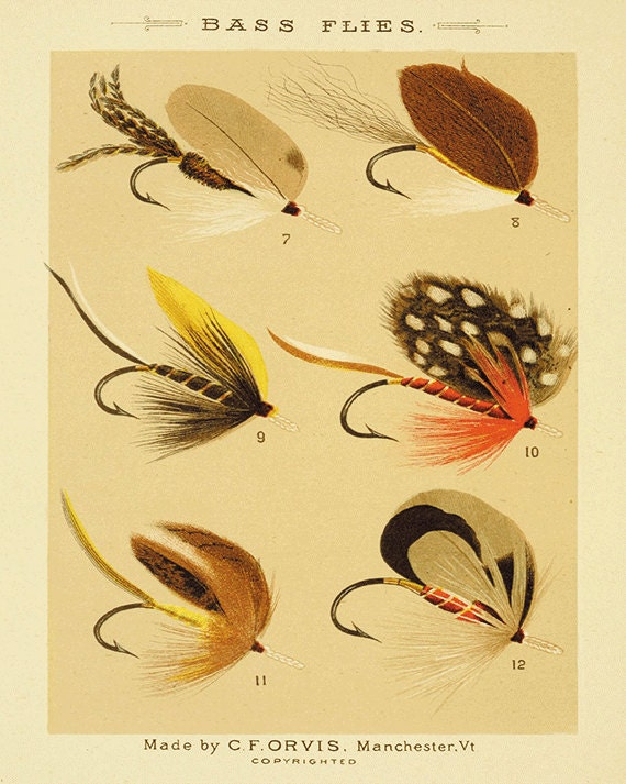 Bass flies fishing print fly fishing art fishing decor art old for Fly fishing decor