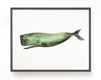 Sperm Whale Watercolor painting, Nautical print, Whale print, Sea animal print, Bathroom art, Green bathroom decor, Ocean Buy 2 Get 1 FREE