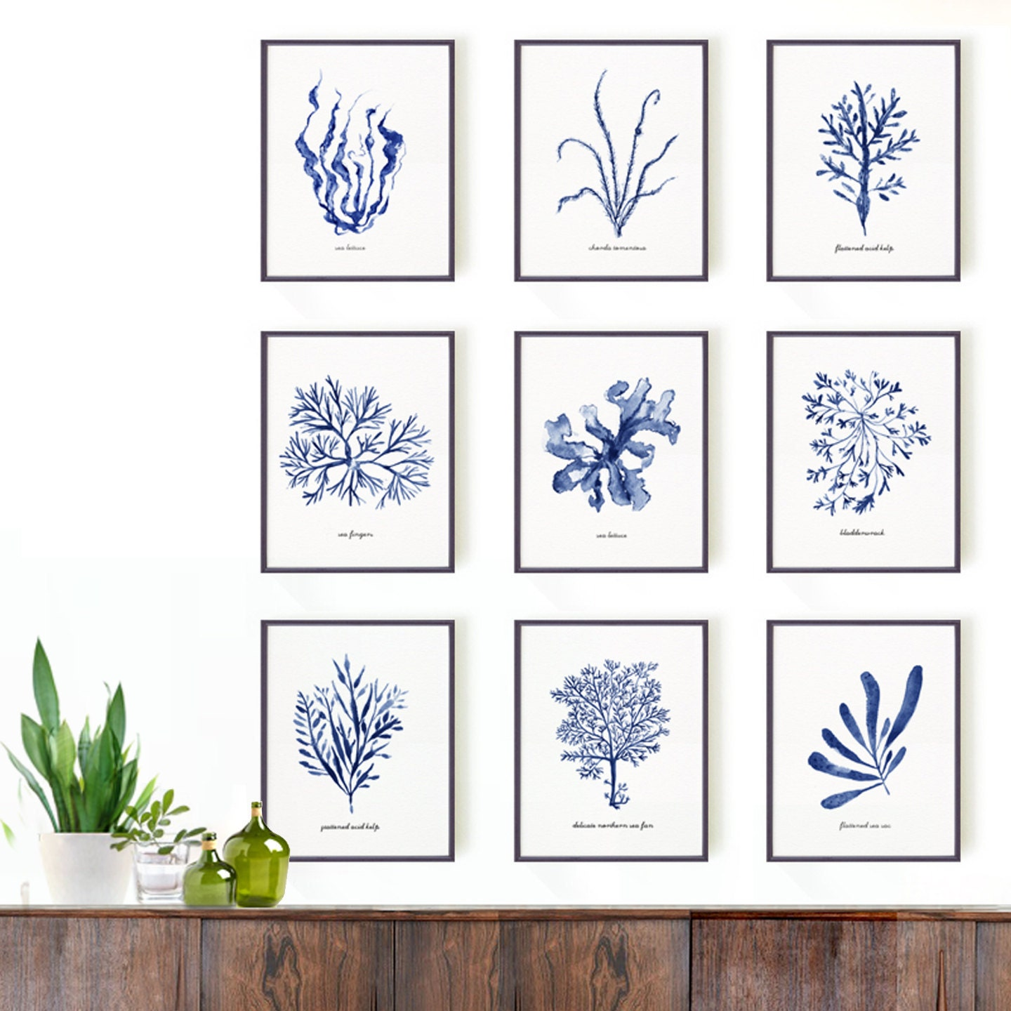 Bathroom d cor seaweed watercolor painting set of 9 for Paintings for bathroom decoration