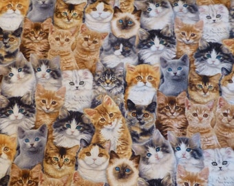 Cotton Fabric, Adorable Pets - Cats by  Elizabeth's Studio, By the Yard, 44/45 inches Wide N131