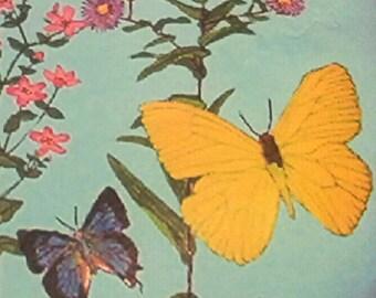 butterflies small garden rock or paper weight