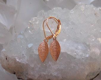 14kSolid  Rose Gold Daphne Bay Leaf Earrings