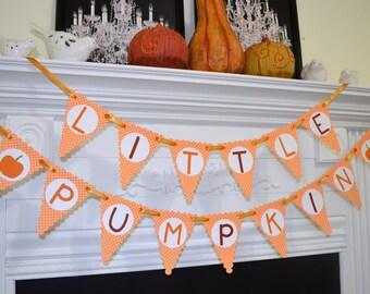 Little Pumpkin Banner, Baby Shower decoration, First Birthday, Toddler Birthday, Fall Party, Halloween Kids Party garland, baby pumpkin