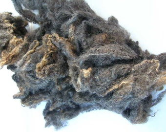Chocolate and grey Lamb's fleece - Large portions (Washed)
