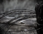 Old farm fence with barbwire looped photograph- 8x10 print matted to 11x14 rural life image