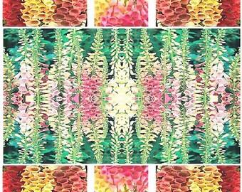 7,000 x Foxy Excelsior Mix Flower Seeds - Digitalis Purpurea - Full sun to shade - FOXGLOVE Zones 3-9