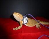 Small/Medium lizard harness