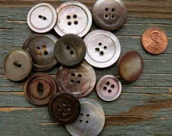 Assortment of 13 Gray Shell Buttons