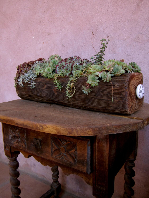 Unique Succulent Wooden Planter