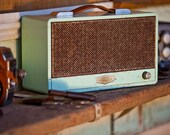 Timbre Relic Seafoam - Handcrafted Wireless Powered Speaker