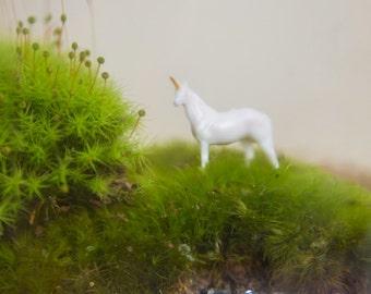 Unicorn DIY Terrarium Accessory for Terrarium kit
