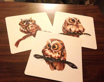 Little Owl Series - 3 Prints