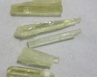 5 Heliodor Beryl Crystal Specimens 40 Carats Yellow Green Jewelry Chakra Reiki Energy Wisdom Strength Meditation Learning Vibration #396