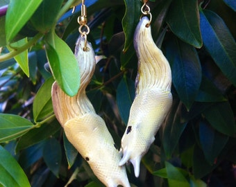 Bewitching Banana Slug Earrings