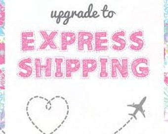express domestic   shipping