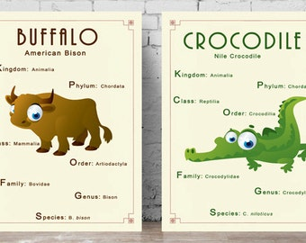 Printable Biology Posters - Animal Classification