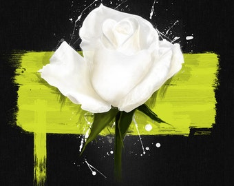 White Rose 70 cm: digital painting reproduced in high quality on paper FineArt. The painting is printed in limited edition 10 PCs