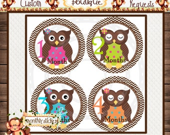 Girl Owls Monthly Baby Milestone Stickers Baby Girl One-Piece Baby Stickers Monthly Baby Stickers Baby Month Stickers  {M88}
