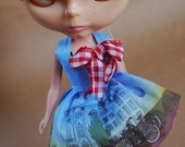Tiny City: Amsterdam Dress for Blythe