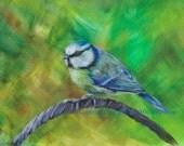 Songbird #4 (Blue Tit), Art Print of Acrylic Bird Painting