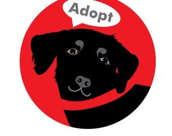 Adopt Bumper Sticker Black Labrador Retriever Dog