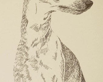 WHIPPET - Artist Kline draws dog art using only words. Signed 11x17 Lithograph 87/500 - Artist Will Add Your Dogs Name Into Art Free