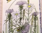 Thistle Butterfly Bees Nature Art Blank Card Cottage Garden Botanical Watercolor Original Artwork
