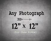 IKEA Ribba Size / 12x12 Print /  for ribba