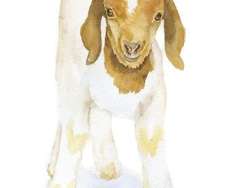 Goat Watercolor Painting - 5 x 7 - Giclee Print - Farm Animal
