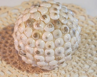 Sea Shell Decorative Ball:  Medium (White Shells)