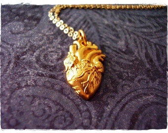 Matte Gold Anatomical Heart Necklace - Matte 24kt Gold Plate Anatomical Heart Charm on a Delicate 14kt Gold Filled Cable Chain or Charm Only