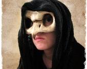 Owl Bird Skull Masquerade Mask